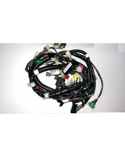 Original wiring harness for ATV SYM QUADRAIDER 600