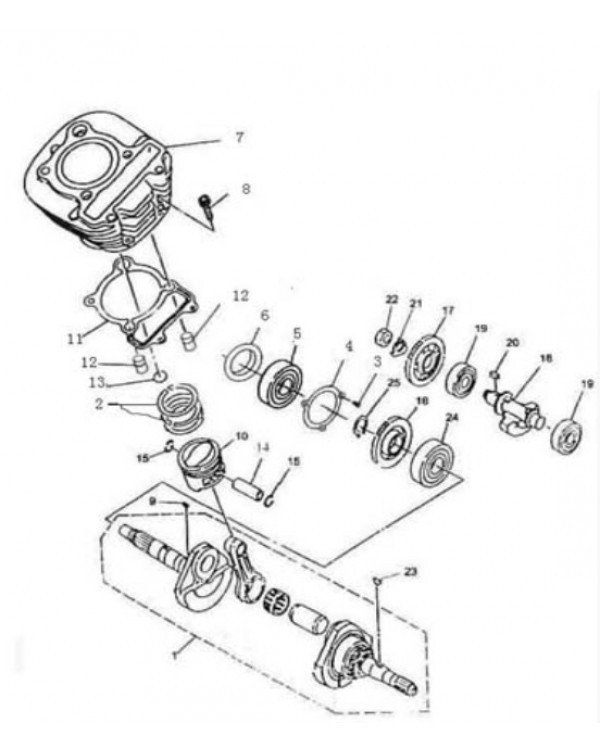 Spare parts catalog for ATV BASHAN BS250S-5 in electronic form