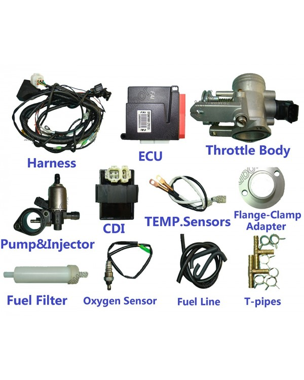 Electronic fuel injection (injector) for ATV 200 kit for self-installation