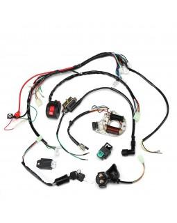 Original wiring harness Assembly for ATV Kazuma Mini Falcon 90 new sample