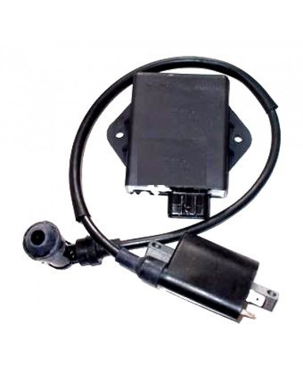 Ignition coil and CDI module for ATV LINHAI 260, 300