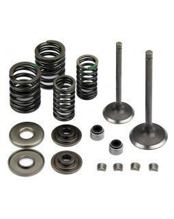 Original kit intake and exhaust valves for ATV GSMOON 260