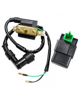 Ignition coil and ignition module CDI for ATV Kazuma Meerkat, Falcon 50, 90, 110