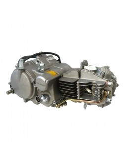 The engine Assembly for pit Bike 160cc model FDJ-017