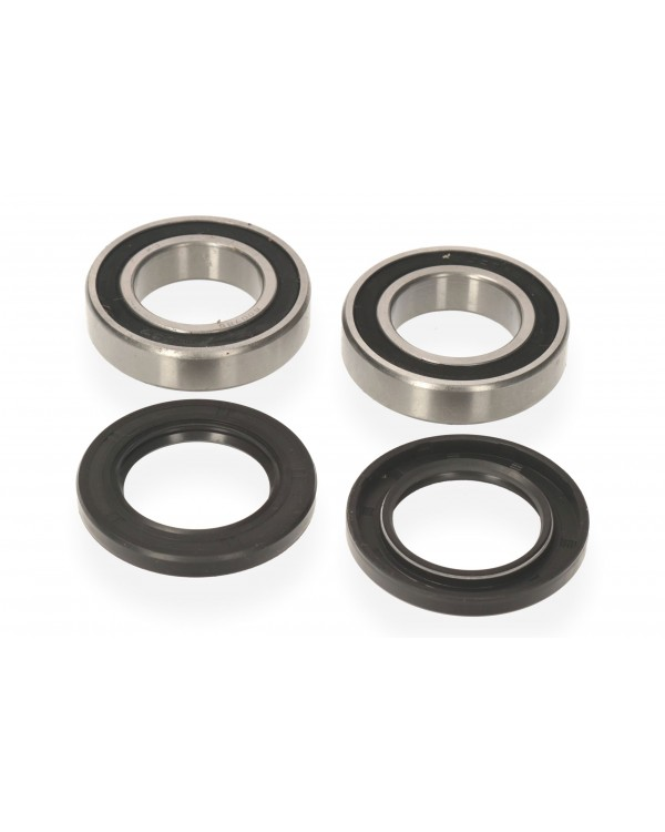 Bearings and seals for the eccentric rear axle ATV Bashan 200 (set)