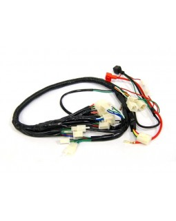 Wiring harness for ATVs 110cc, 125cc, 150cc