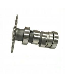 Original camshaft for ATV FUXIN 200 CVT