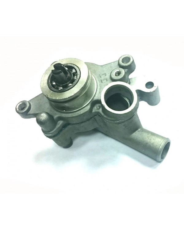 Original water pump for Linhai ATV 260, 300
