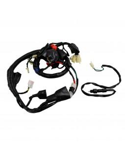 Wiring harness for ATV QUAD SHINERAY 150
