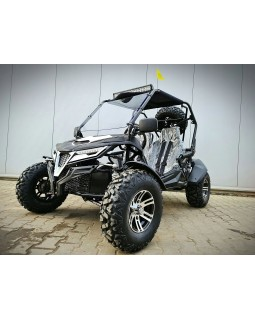 BASHAN 250 BUGGY assembly