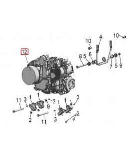 Original engine assembly for ATV LINHAI 500, M550, M550L, T-BOSS 550