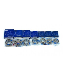 The original set of bearings of the transaxle for ATV LUCKY STAR ACCESS SP 250, 300