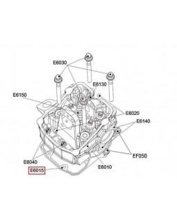 Original Block Head Gasket for ATV CECTEK 500 EFI KINGCOBRA, ESTOC - T4, T5, T6