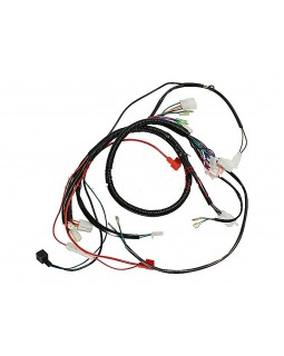 Wiring harness for ATV 150 GY DIABLO