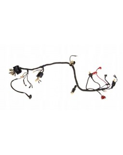 Wiring harness for ATV BASHAN 300 BS300S-18