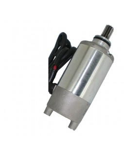 The original starter for ATV BASHAN BS250S-5 with reducer