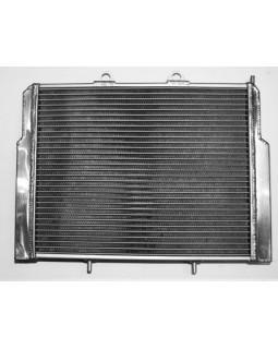 Оригинальный радиатор для квадроцикла ATV Polaris RZR 800 усиленый