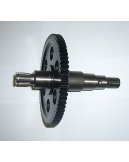 Original End Gear Assembly for BAGGY PGO 250