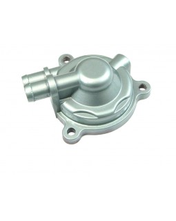 Cover water pump for ATV Bashan 200, 250 Paint