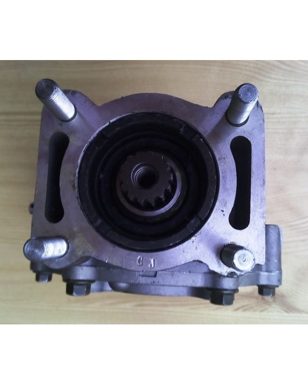 Reducer of the rear axle underneath the driveshaft for ATV BASHAN BS250S-5 ROMET
